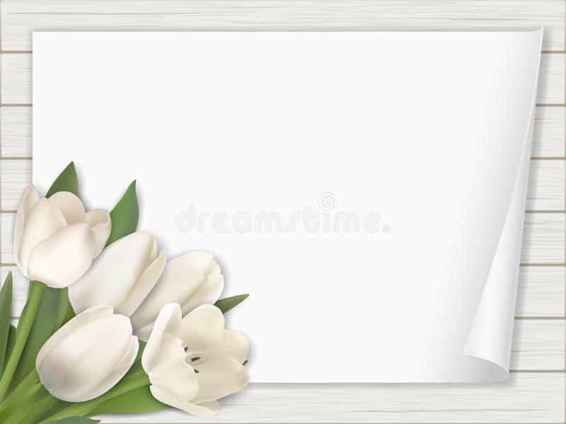 Tulipanowy kwiatu papier na drewnianym tle royalty ilustracja