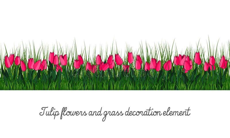Tulipanu i trawy dekoraci element ilustracji