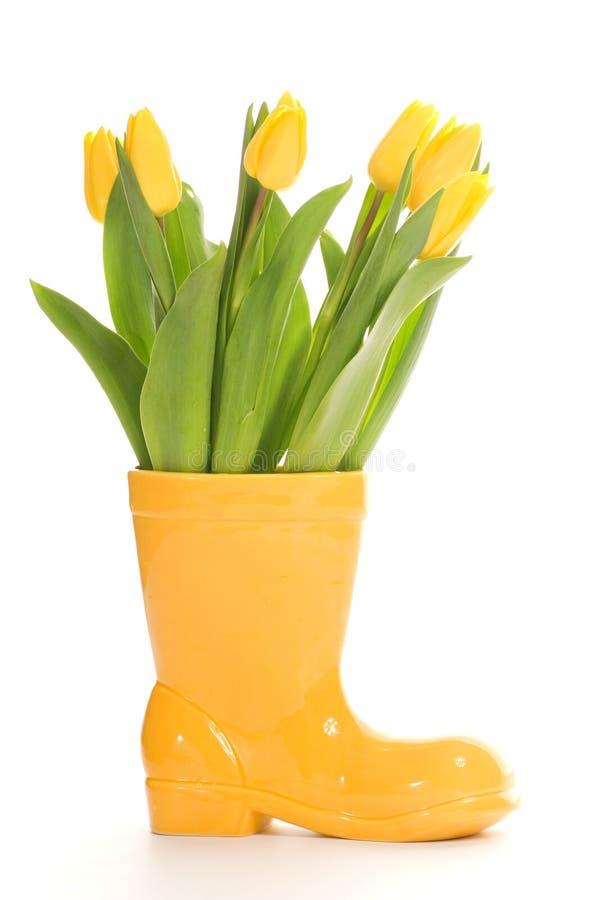 tulipany świeże