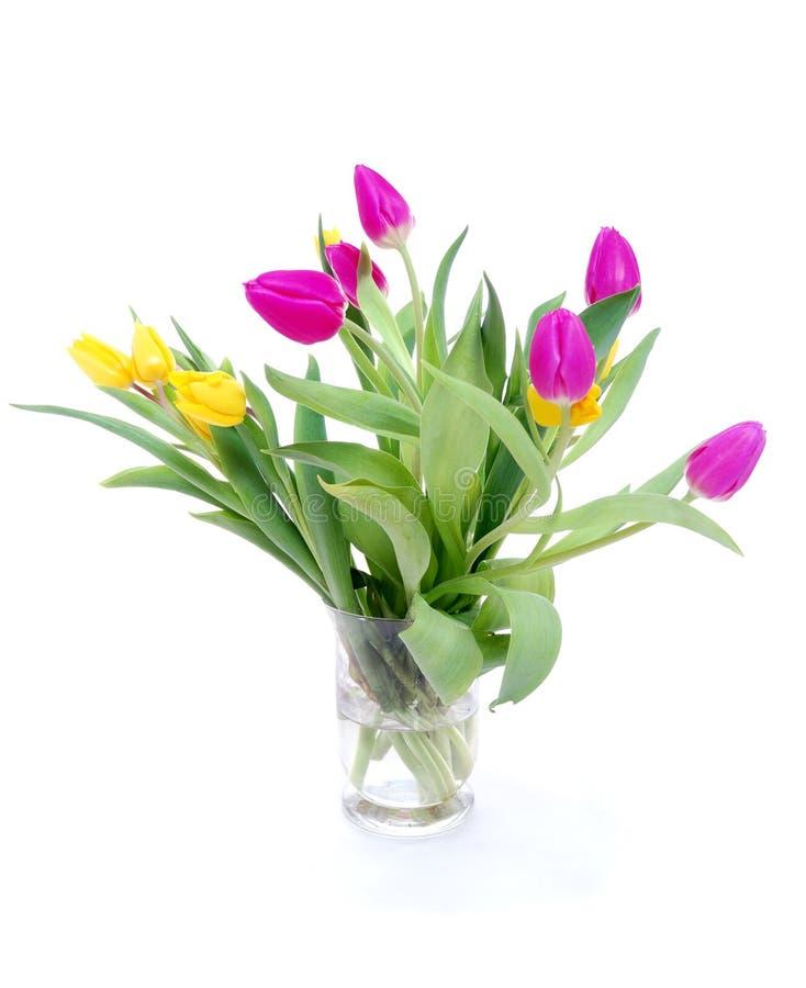 Download Tulipany obraz stock. Obraz złożonej z easter, ogród - 13328641