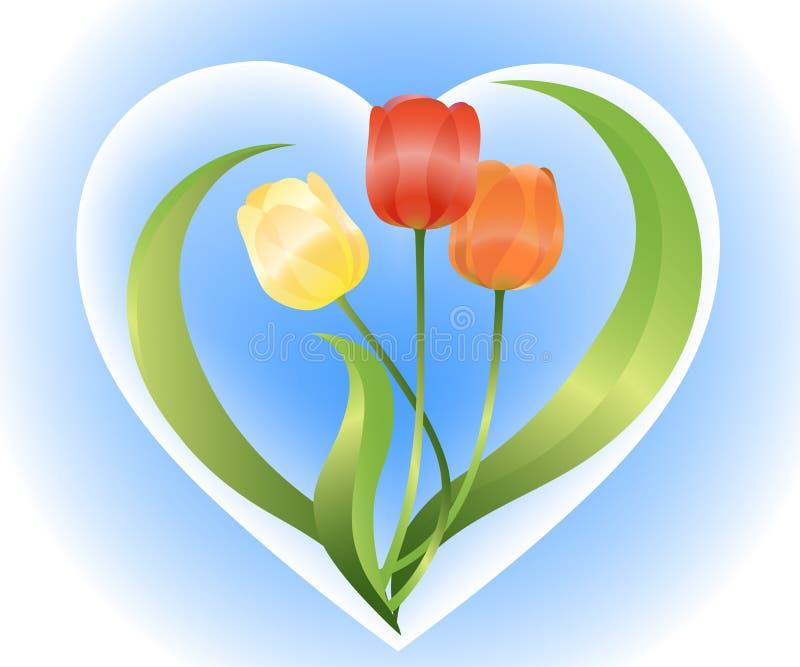 tulipany ilustracji