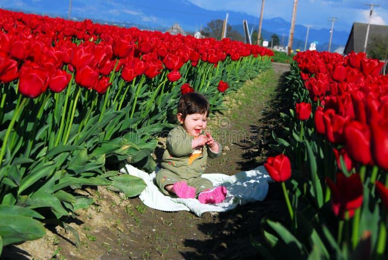 Tulipany i dziecko zdjęcie royalty free