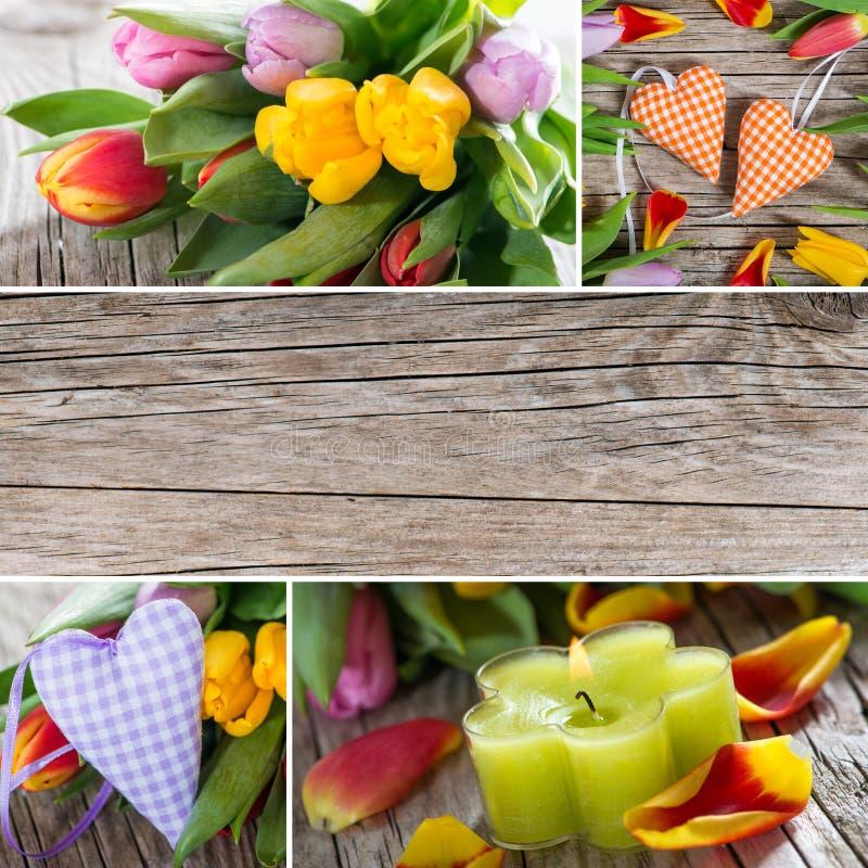 Tulipany i serce kolaż obrazy stock