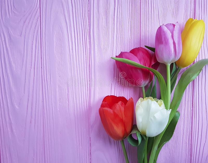 Tulipany na różowego drewnianego tła nieociosanym motherromantic roczniku zdjęcie royalty free