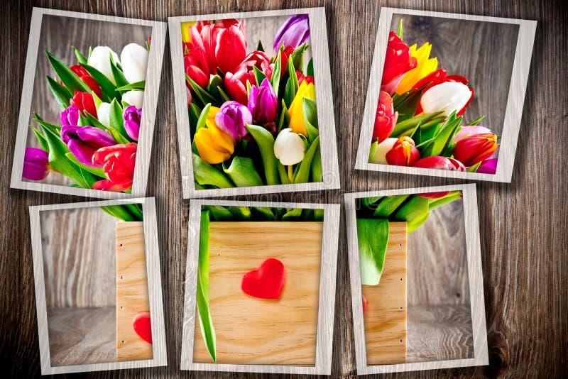 Tulipany w pudełku zdjęcia stock
