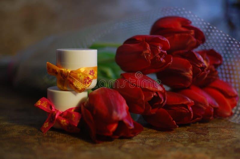 Tulipas imagens de stock royalty free