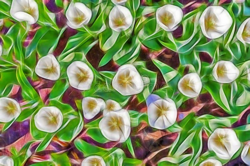 Tulipas abstratas bonitas da flor do fractal imagem de stock