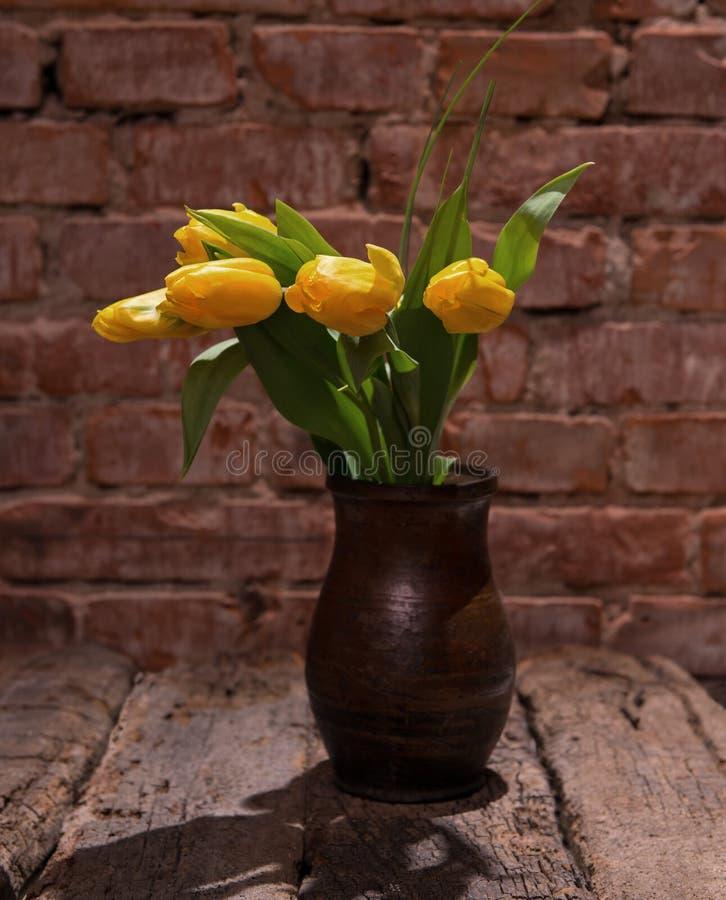 Tulipas amarelas bonitas no vaso foto de stock royalty free