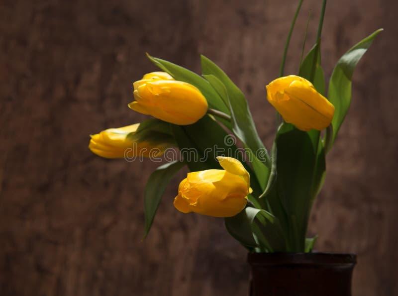 Tulipas amarelas bonitas no vaso foto de stock