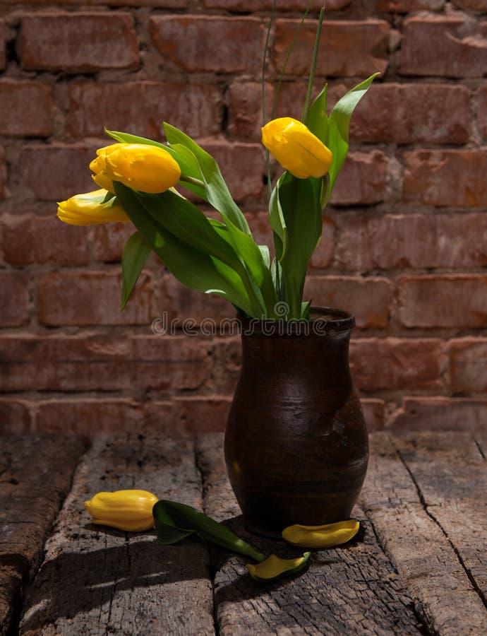 Tulipas amarelas bonitas no vaso fotografia de stock royalty free