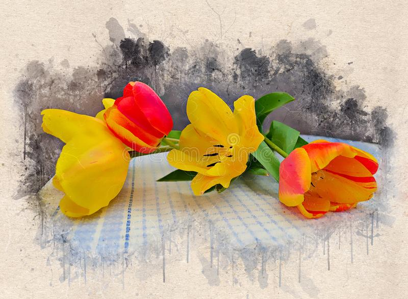 Tulipas amarelas e vermelhas bonitas pintadas aquarela ilustração do vetor