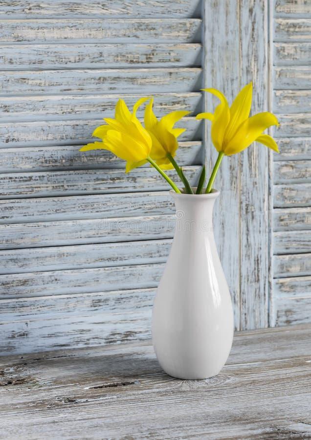 Tulipas amarelas em um vaso cerâmico branco no fundo de madeira azul fotos de stock