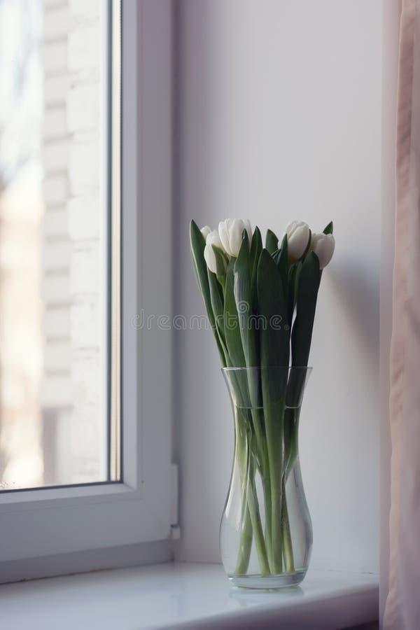 Tulipas brancas em um vaso imagem de stock royalty free
