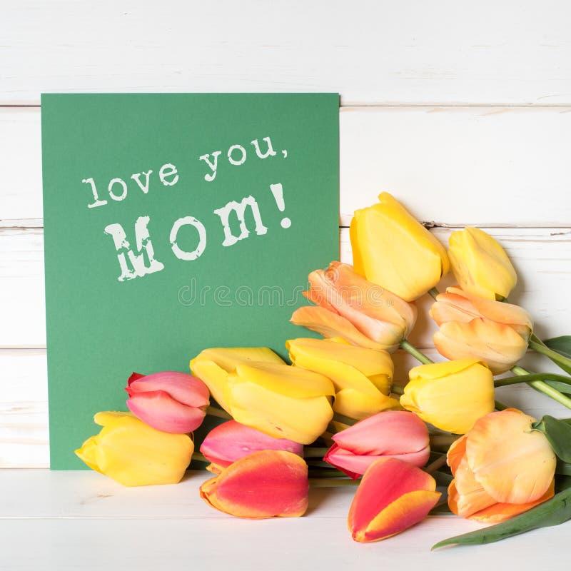 Tulipas coloridas da mola em vermelho e em amarelo com um cartão verde com amor você, desejos da mamã carimbou nele Quadrado com  fotografia de stock royalty free