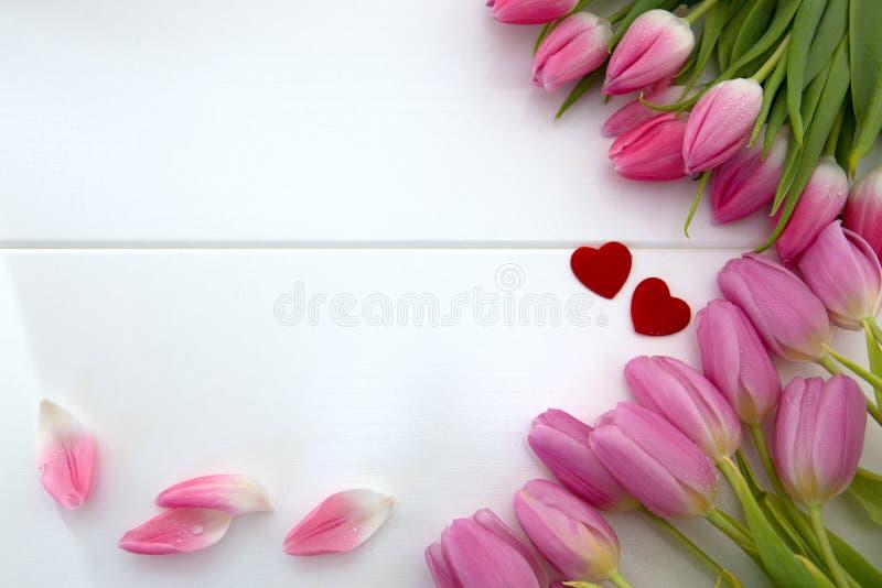Tulipas cor-de-rosa e dois corações do amor isolados no fundo de madeira branco imagens de stock royalty free