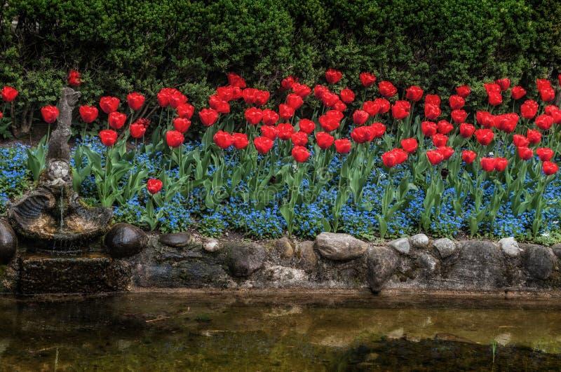 Tulipas e flores jardimde s em Sigurtà ' foto de stock