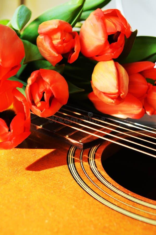 Tulipas e música, símbolos holandeses imagens de stock royalty free