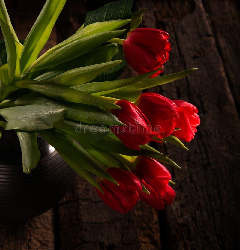 Tulipas vermelhas bonitas no vaso preto imagens de stock