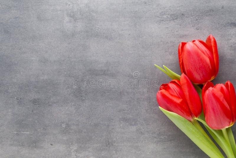 Tulipas vermelhas em um fundo de madeira fotos de stock