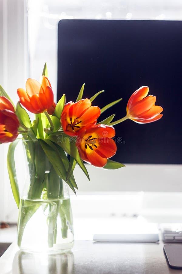 Tulipas vermelhas em um suporte do vaso perto de um monitor do computador O conceito da decoração da mola no desktop em seu esc fotografia de stock royalty free