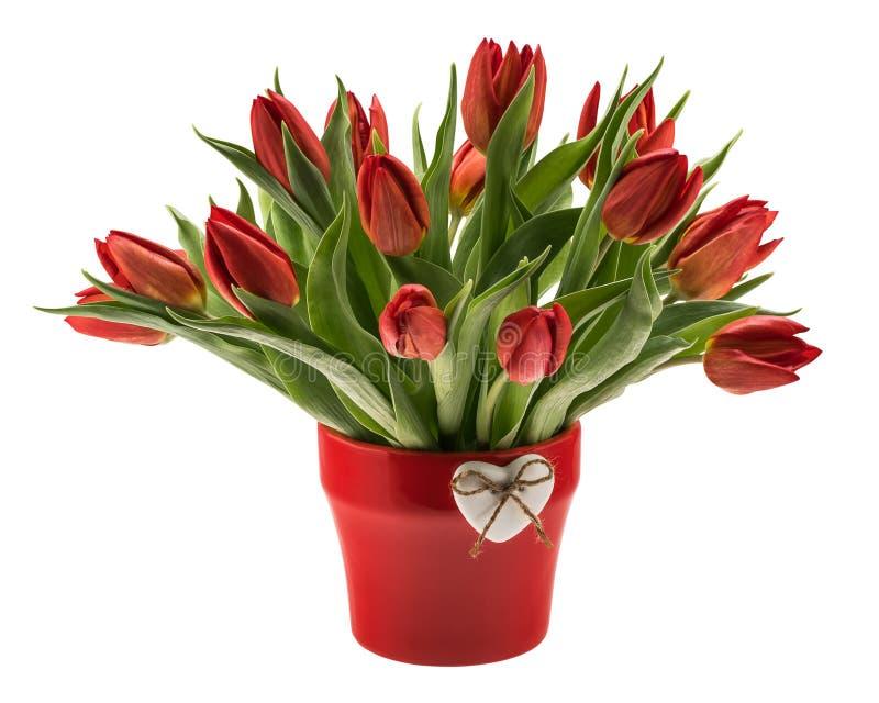 Tulipas vermelhas no vaso imagens de stock royalty free