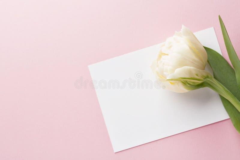 Tulipe et carte de voeux vierge Vue supérieure image stock