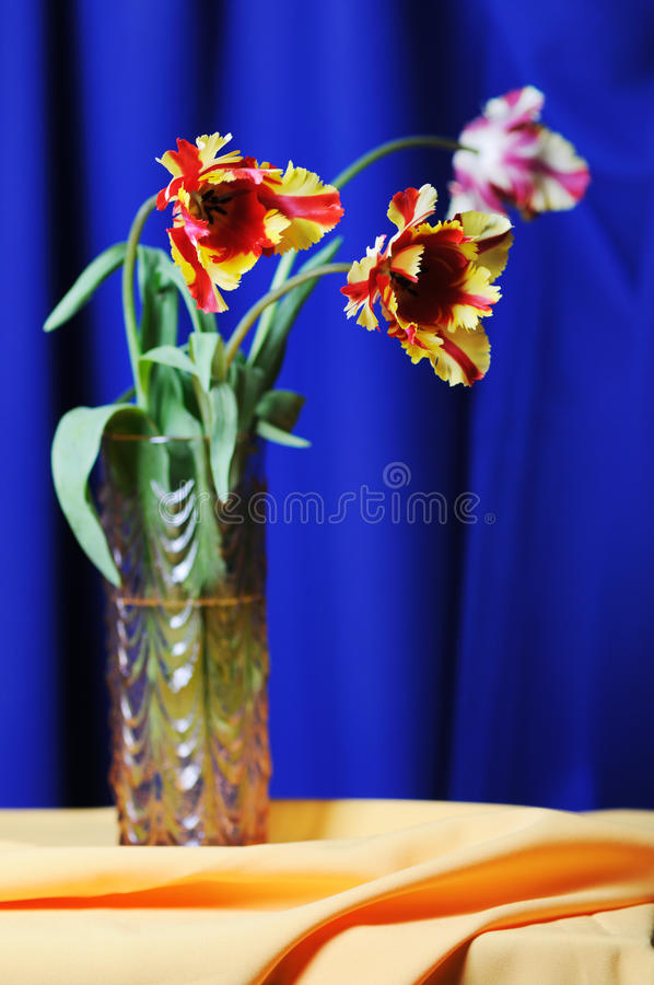 Tulipes. image libre de droits