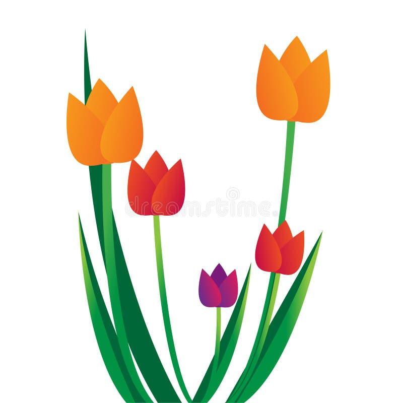 Tulipes illustration libre de droits
