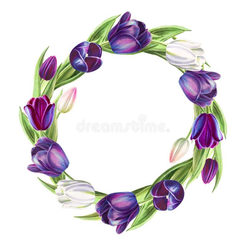 Tulipes blanches et noires de belle guirlande Dessin de marqueur Peinture d'aquarelle illustration libre de droits