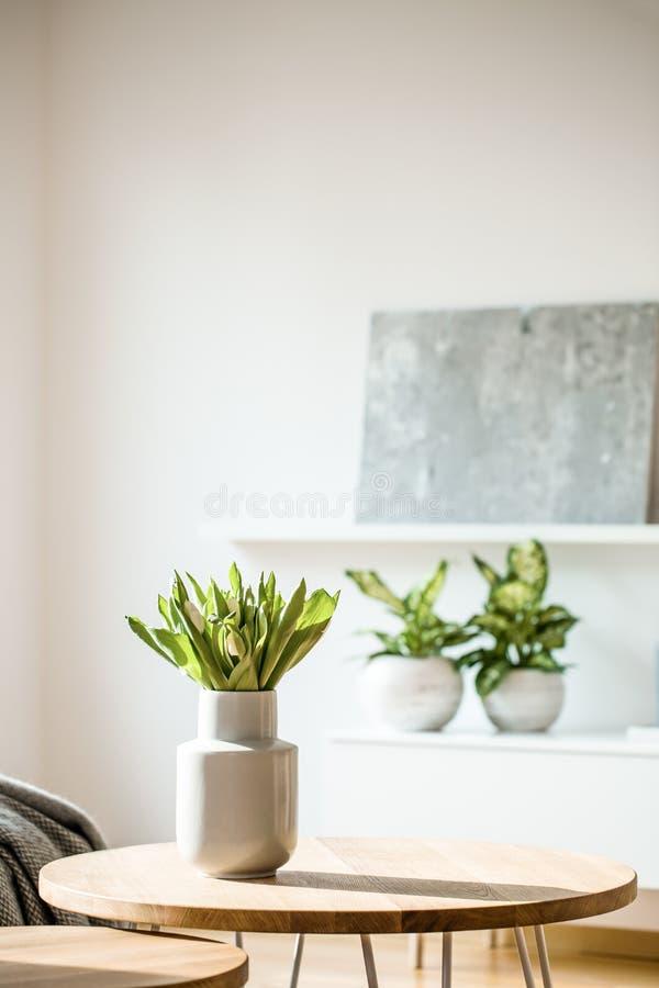Tulipes blanches fraîches dans le vase en céramique se tenant sur une table en bois dedans photo libre de droits