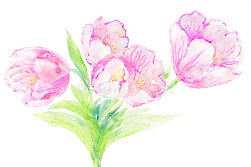 Tulipes d'art de mur d'aquarelle illustration stock