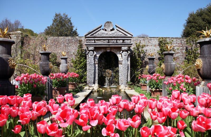 Tulipes d'Arundel de jardin de château photo libre de droits