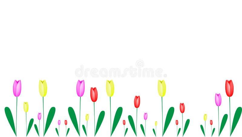 Tulipes dans différentes couleurs comme cadre illustration libre de droits