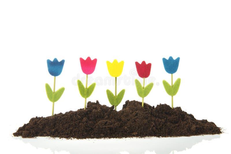 Tulipes de rang?e dans le jardin photographie stock libre de droits