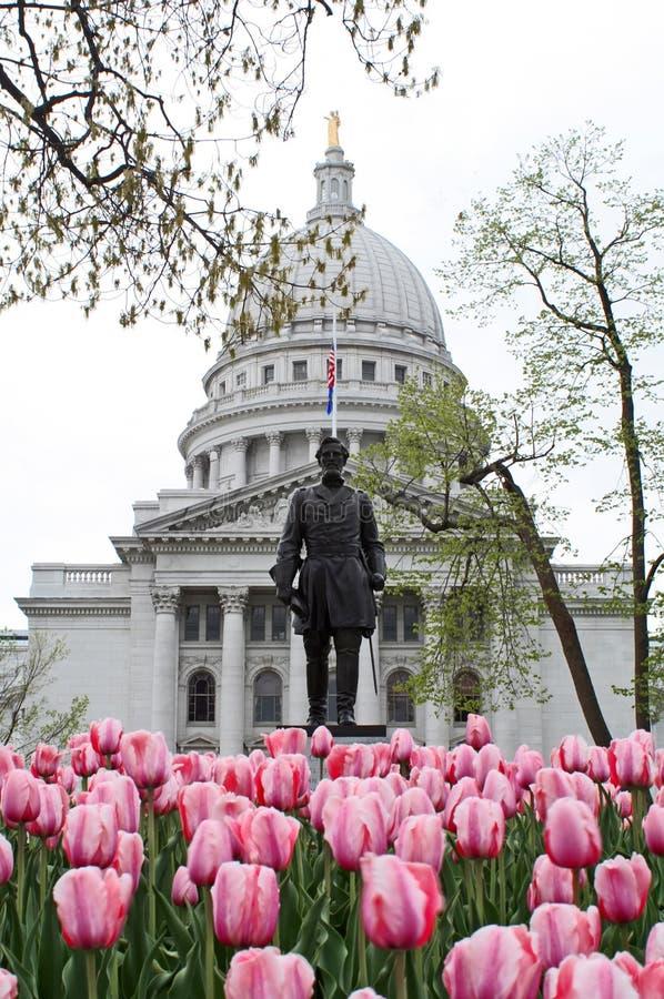 Tulipes De Source Au Capitol Photographie stock