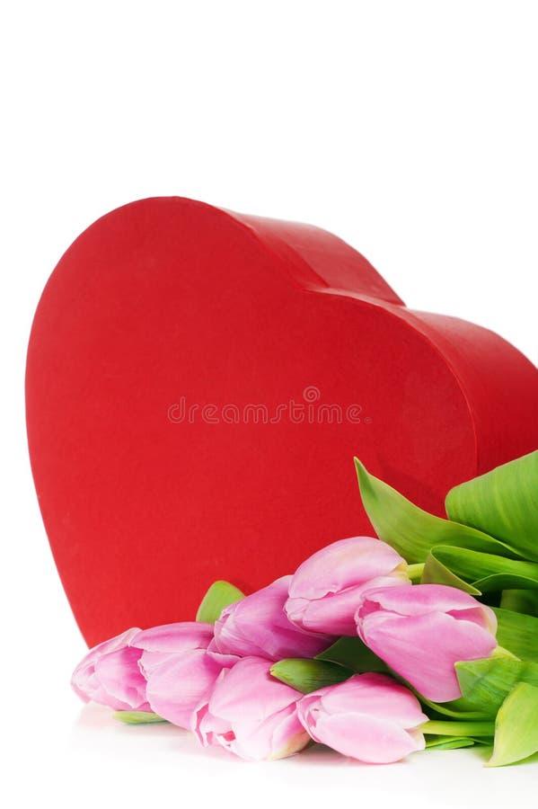 Tulipes et cadre de cadeau roses photographie stock libre de droits