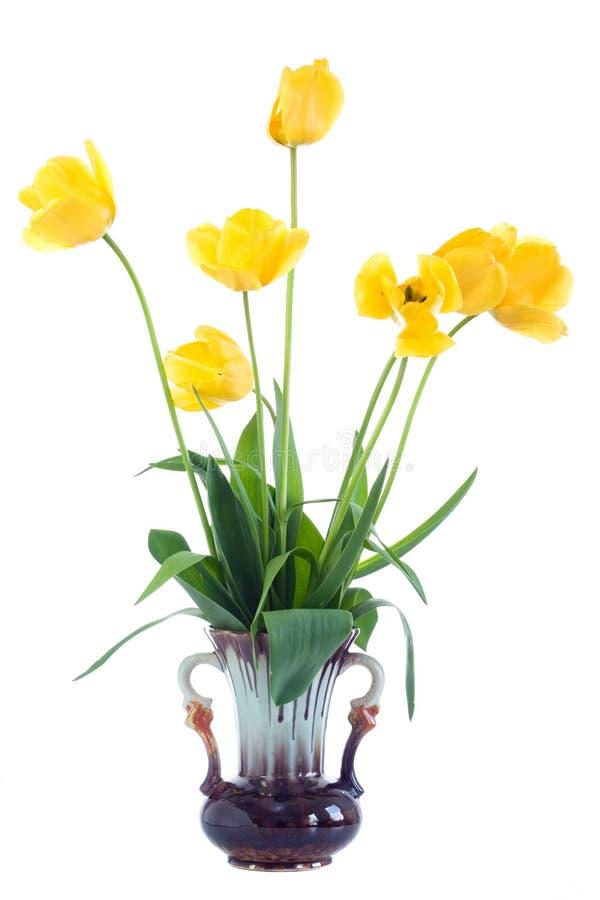 Tulipes jaunes dans le vase. image libre de droits
