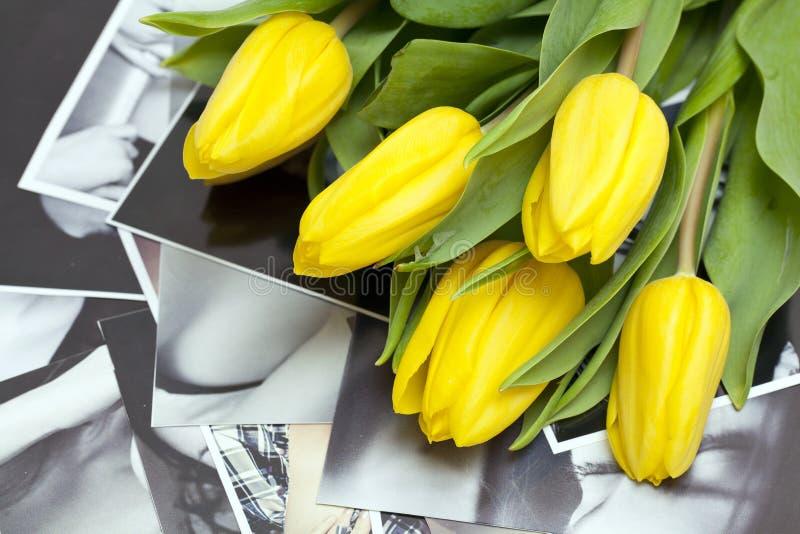 Tulipes jaunes sur les photographies noires et blanches photos stock
