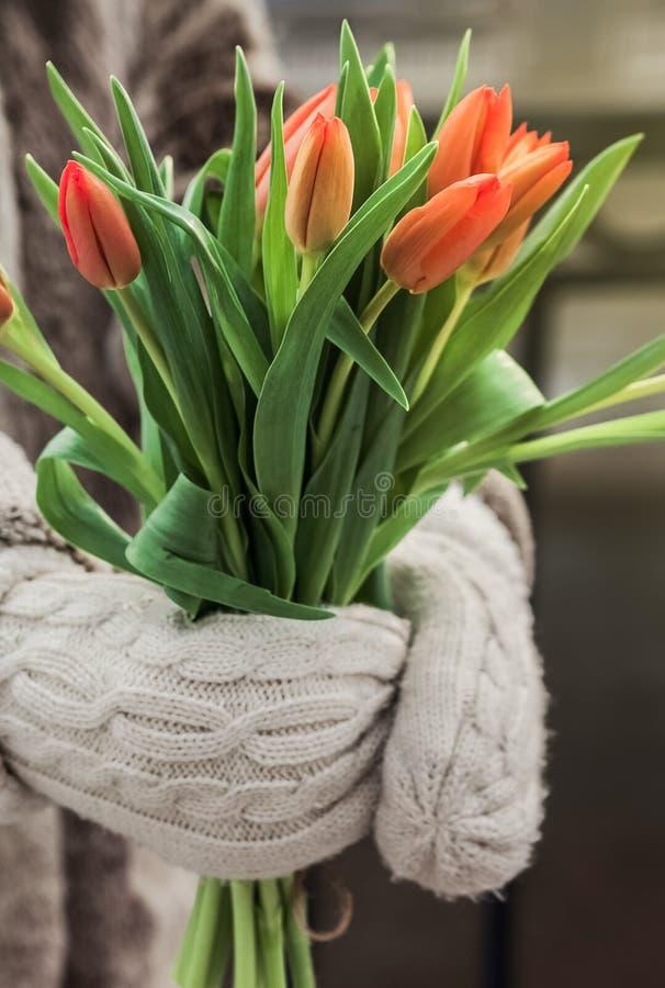 Tulipes oranges dans des mains image stock