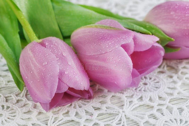 Tulipes pourpres sur une nappe de crochet photo stock