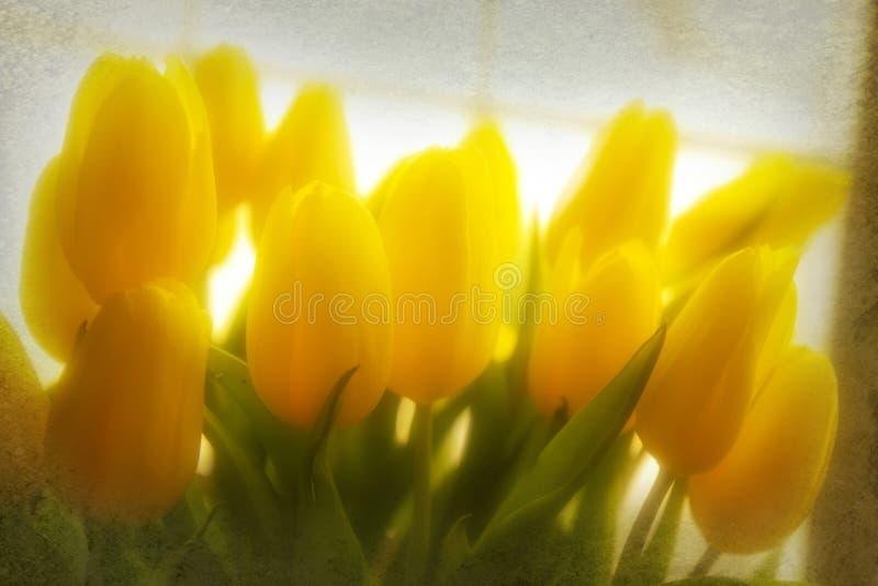 Tulipes rêveuses (texturisées) illustration de vecteur