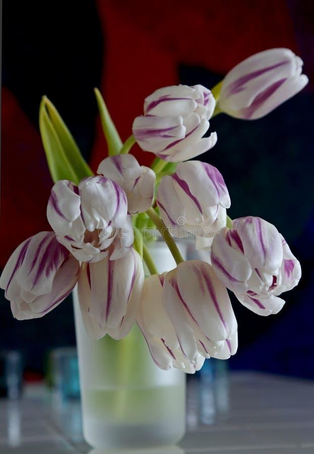 Tulipes rayées violettes blanches dans le vase images libres de droits