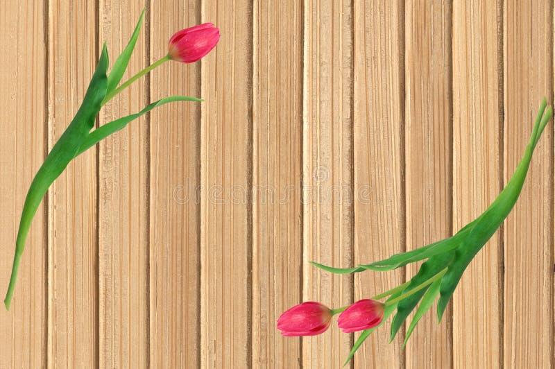 Tulipes roses au-dessus de table en bois jaune minable images libres de droits