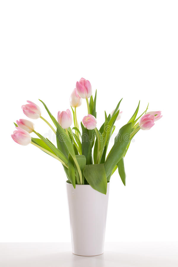 Tulipes roses dans un vase photographie stock libre de droits