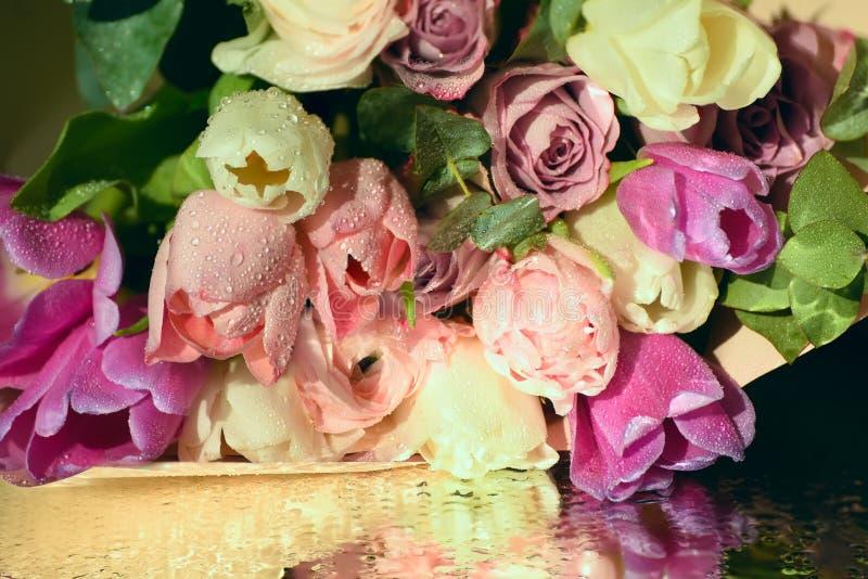 Tulipes roses sensibles photographie stock libre de droits