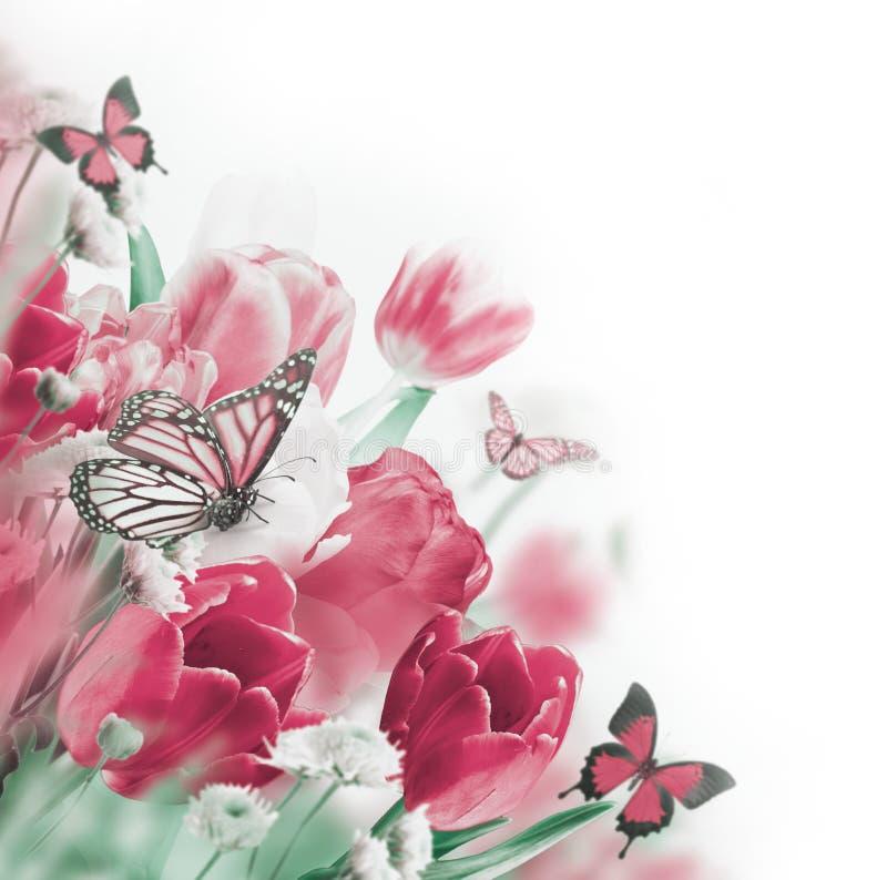 Tulipes rouges avec le vert photographie stock libre de droits