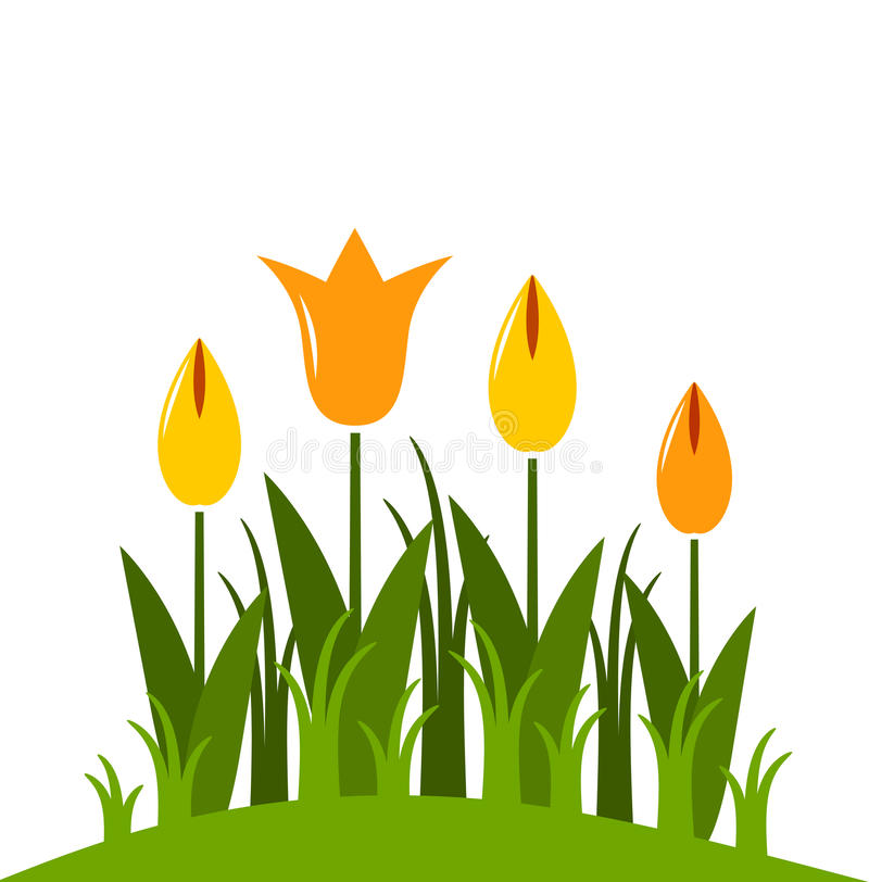 Download Tulips stock vector. Illustration of natural, nature - 19237150