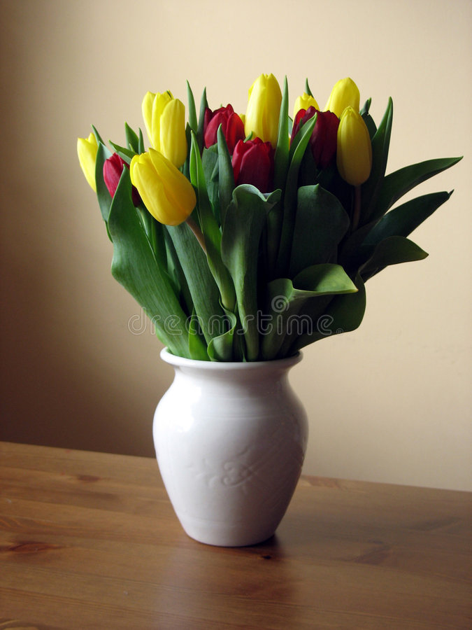 Tulips 2 royalty free stock photos