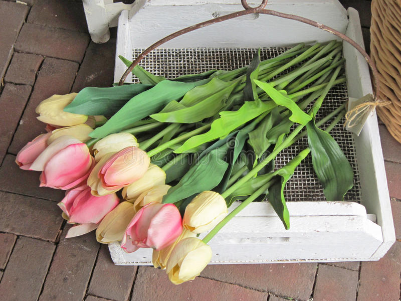 Download Tulips stock photo. Image of wood, decoration, colored - 26630302