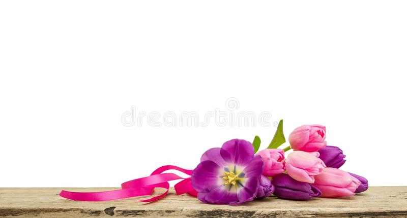 Tulips bouquet lying on a wooden Board isolated on white background stock images